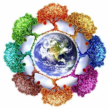 Проблемы антропогенного воздействия на окружающую среду