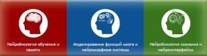 """Школа """"В будущее наук о мозге и интеллекте"""""""