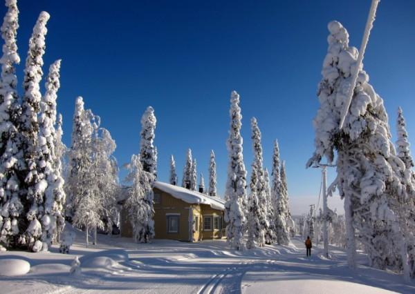 в Финской Лапландии